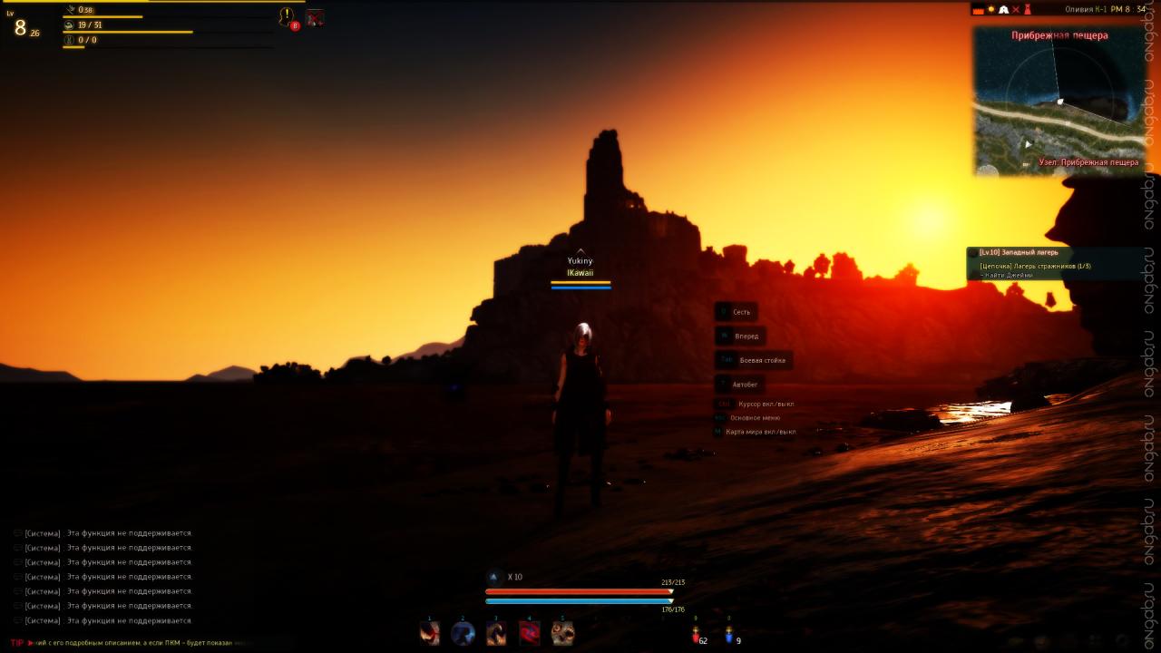 Скриншот Black Desert Online #463160