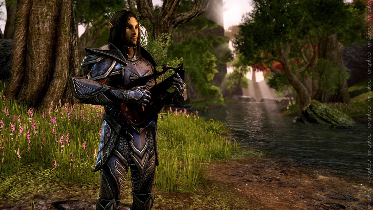 Выход патча 1.5.3. для The Elder Scrolls Online