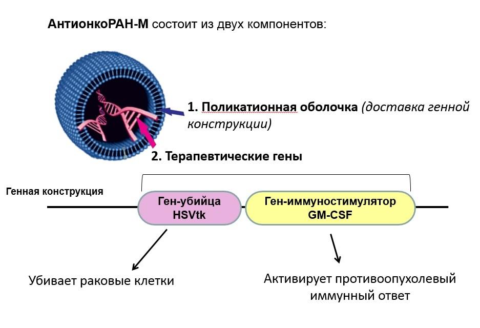 Вся правда о «Сибирские ученые создали лекарство от рака в 300 раз дешевле импортного».