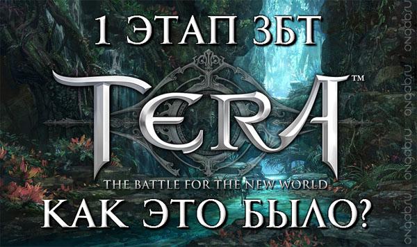 Итоги первого этапа закрытого тестирования русскоязычной версии TERA