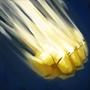 Умение: Storm Hammer